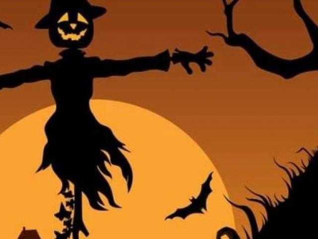 Halloween Discos - Friday 1st November